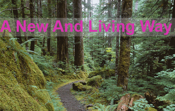 a-new-and-living-way